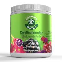 Cardiovascular Reds Render