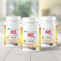 Purewellness Gut Care