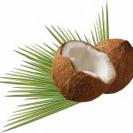 Opened Coconuts